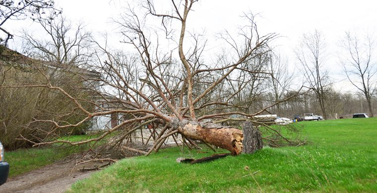 Hurricane force winds hit Six Nations and most of southern Ontario Friday causing power outages, damages and shutting down businesses. (Photo by Jim C Powless)